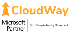 CloudWay Logo with Microsoft Partner