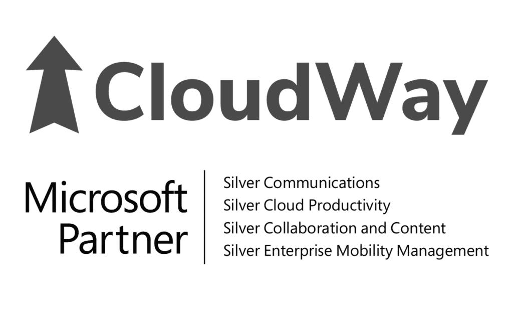 Microsost silver partner 2018